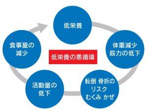 低栄養の悪循環